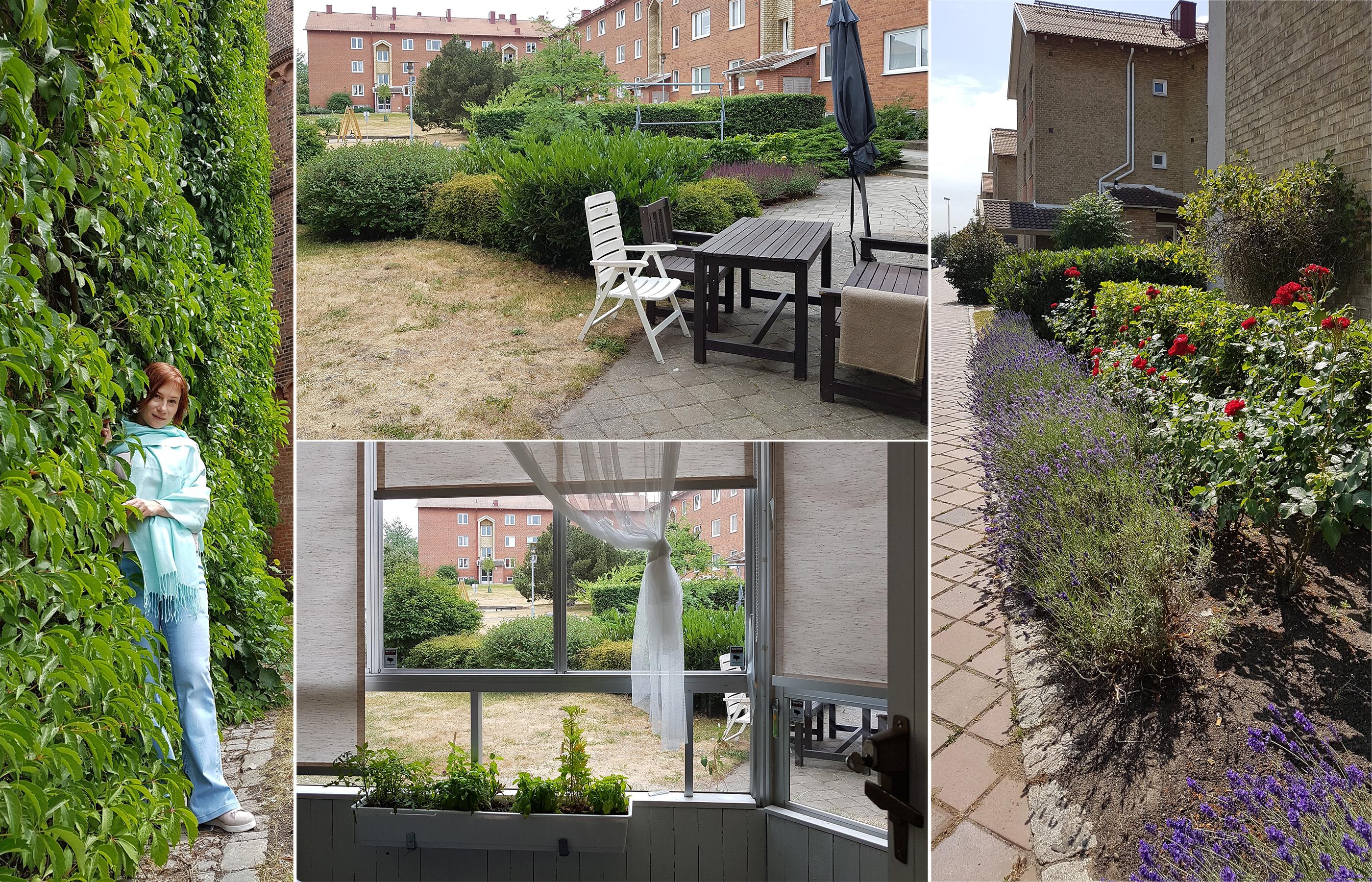 Цветущие шведские дворики