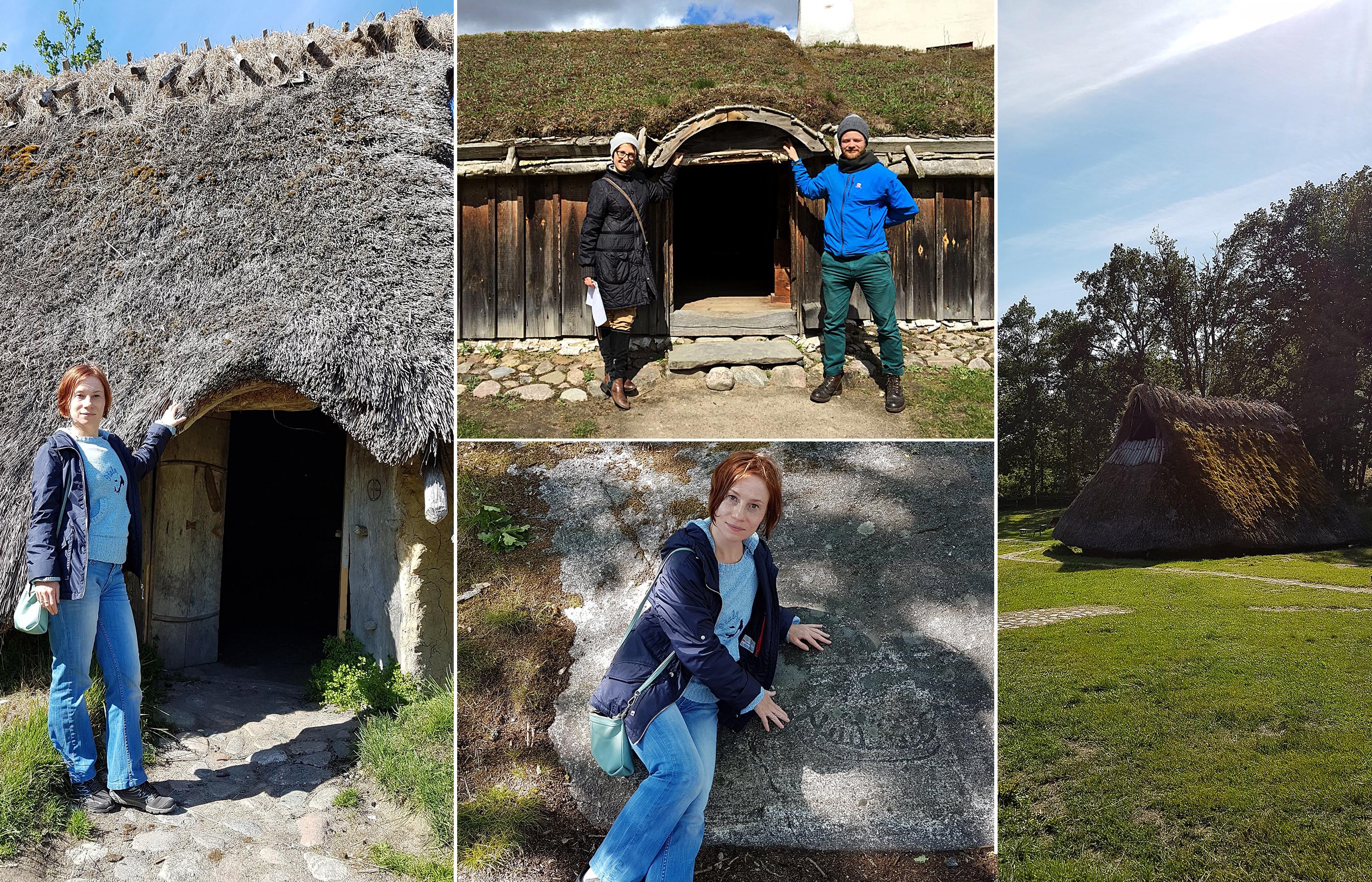 Крыши домов в Скандинавии, покрытые дерном и камышом