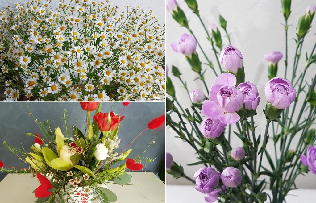 Цветы для дизайна интерьера