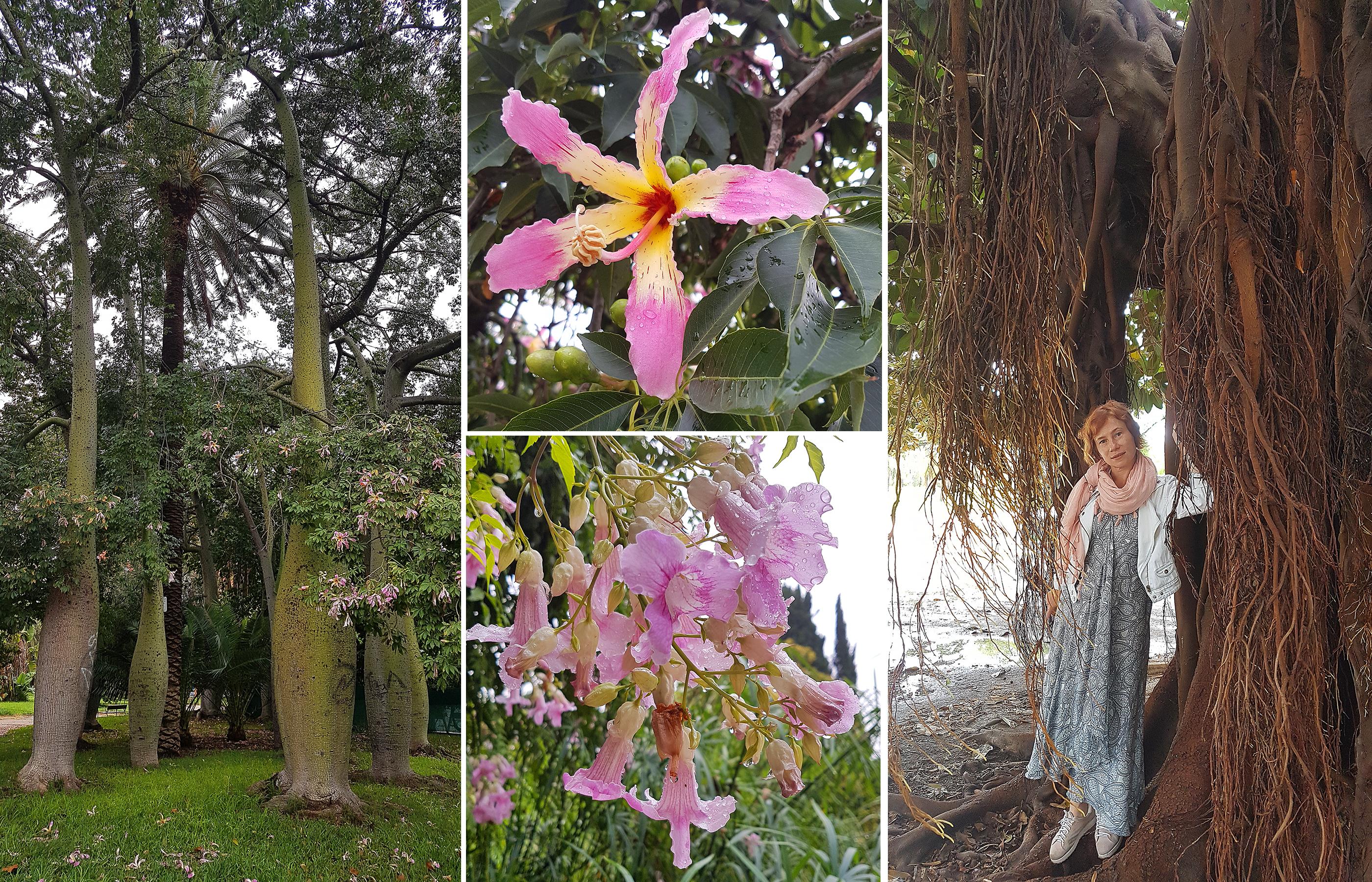 El Jardin del Turia