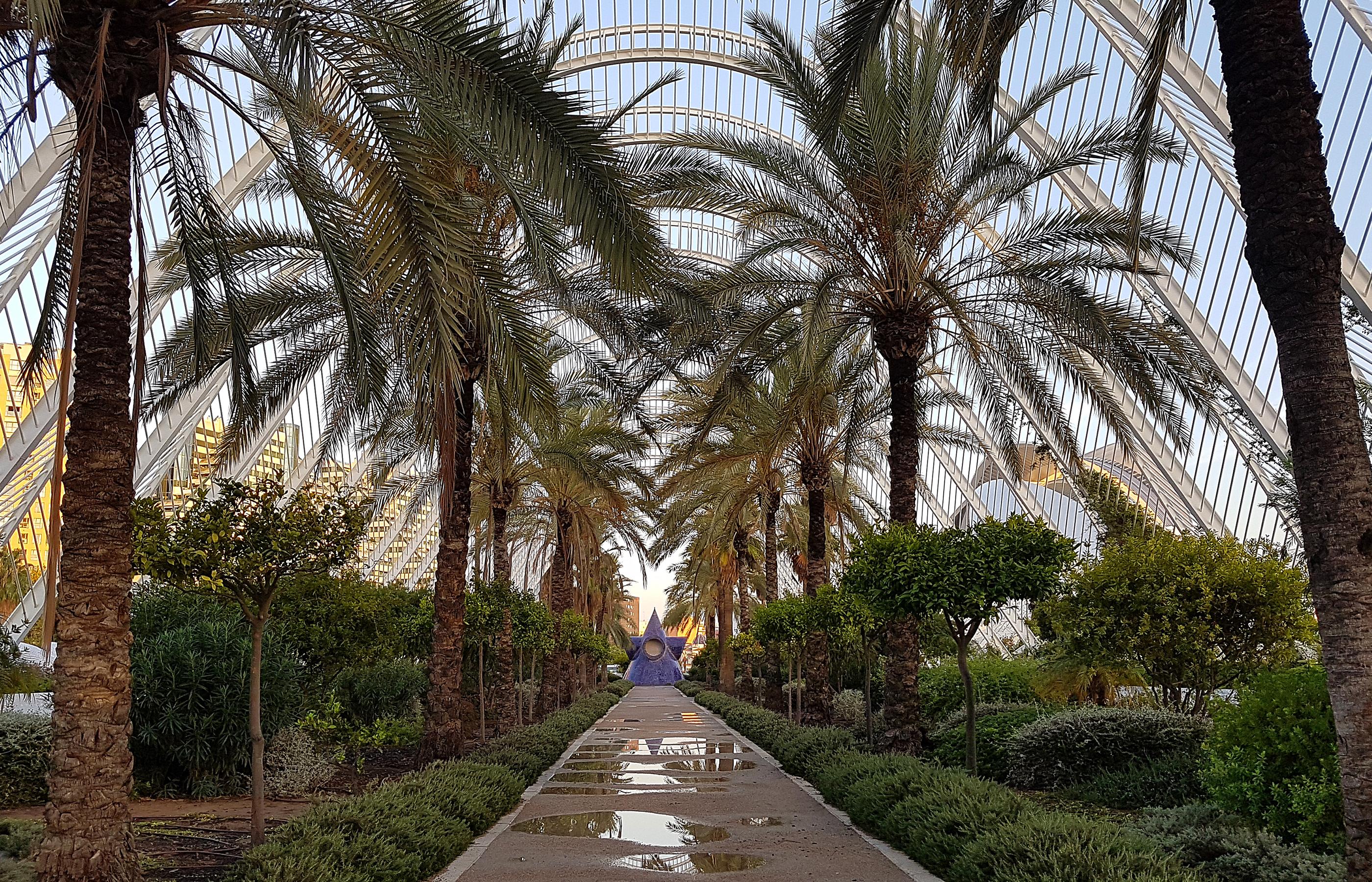 В Оранжерее произрастает более 5000 видов экзотических растений. Внизу, под оранжереей расположена огромная трёхэтажная подземная стоянка для машин.